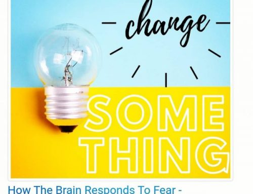 How The Brain Responds to Fear – Dr. Jessica Pae featured on Change Something